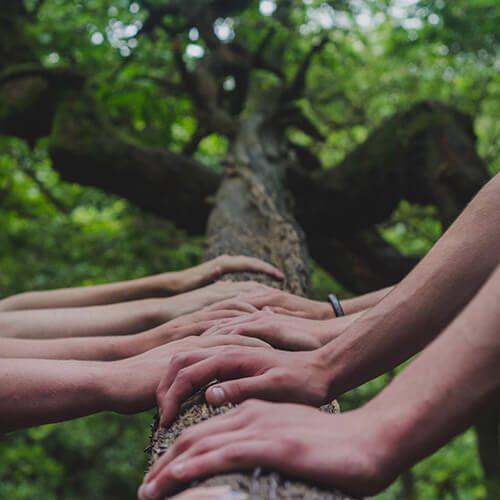 Gemeinsam Schule verändern